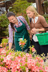 Garden center woman help customer choose flowers