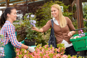 Garden center worker selling potted flower customer