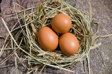chicken eggs in nest of hay on stone outdoor