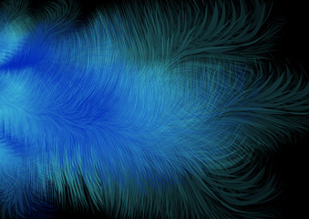 Abstract feather background