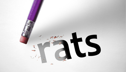 Eraser deleting the word Rats