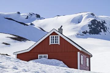 Winter auf dem Vikafjellet