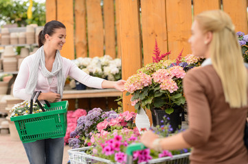 Customer woman shopping flowers in garden center