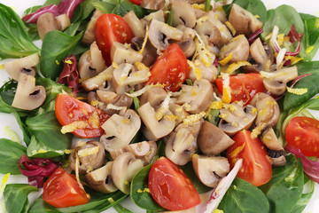 Mushroom salad with tomatoes.