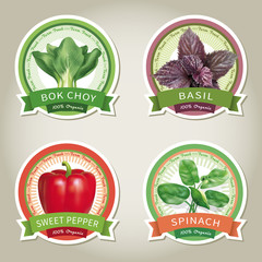 Set of vector labels with vegetables and herbs. Vector
