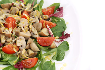Close up of mushroom salad.