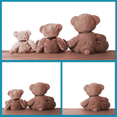 Cute Little Bears