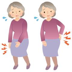 シニア女性 膝の痛み 腰痛