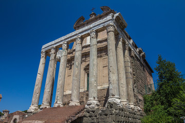 Ruins of The Forum in Rome Italy