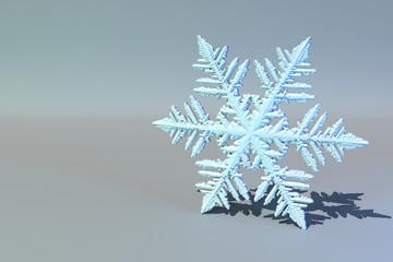 Surreal snowflake.