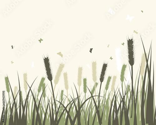 Naklejka Summer meadow