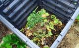 composteur plastique, bac de recyclage dans le jardin