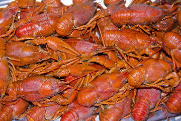 Many crawfishes