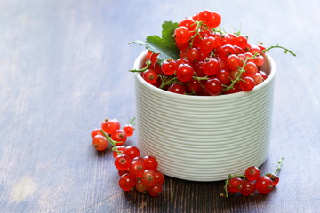 ripe red currants in a white bowl
