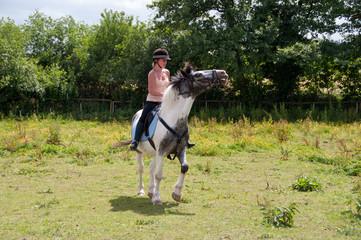 Horse evading the bit