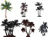 Palmiye ağaçları seti poster