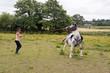 Difficult horse