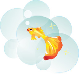 goldfish as a symbol of desire