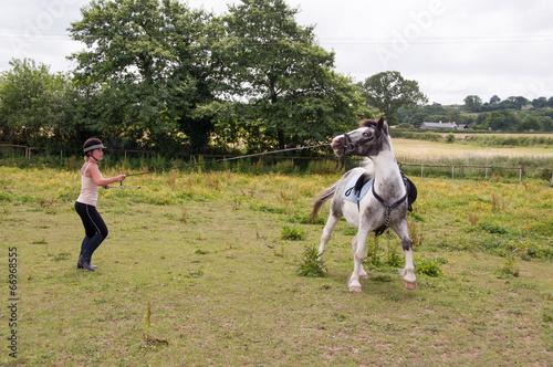 Foto op Aluminium Paardensport Difficult horse