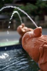 Elephant Shape Fountain