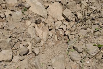 Stone Path II