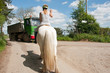 Horse rider & traffic
