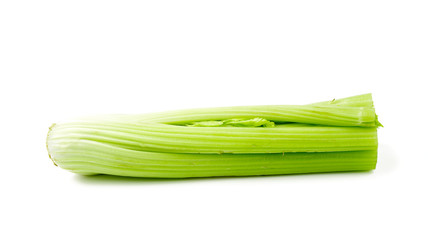celery isolated on white