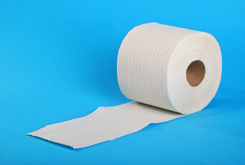 Single roll of toilet paper