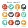 Vector set of flat icons with human organs - 66972343