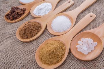 Various type of sugar on wooden spoon