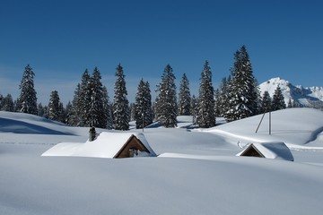 Snow covered huts and trees in Toggenburg
