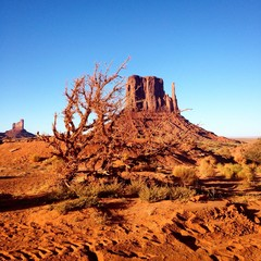 Beautiful landscape - Monument Valley