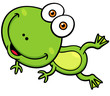 Vector illustration of Cartoon green frog
