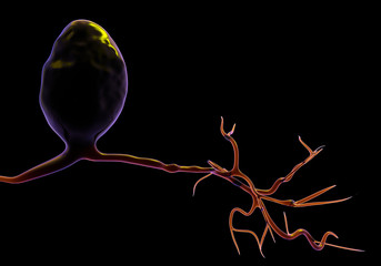 Unipolar Neuron, artwork