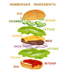 Hamburger ingredients set