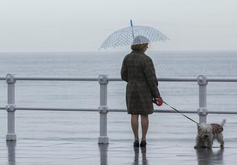 Mujer con paraguas y perro paseando por la ciudad