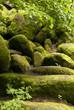 canvas print picture - Nature Reserve Doost