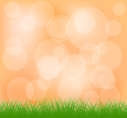 Natural green grass and orange background