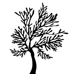 Tree silhouette with leaves on white background.