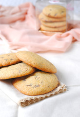 Vanilla Cookies with Chocolate Drops