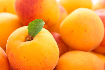 Fresh apricots background.