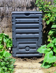 composteur noir, compost dans le potager