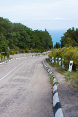 mountain road overlooking the sea and pine
