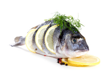 Fresh dorado with lemon on white background