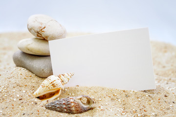 Seashells with blank card