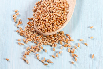Grains of wheat on the wooden background