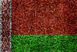 Belarus Flag color grass texture background