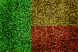 Benin Flag color grass texture background