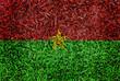 Burkina Faso Flag color grass texture background