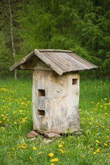 Old bee hive